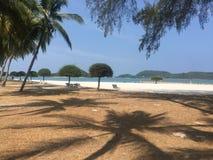 Percorso sabbioso su una spiaggia in sole caldo con la palma Immagini Stock