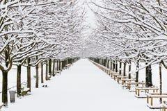 Percorso senza fine coperto di neve pura bianca a Parigi Fotografie Stock Libere da Diritti