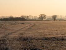 Percorso sopra un campo congelato Fotografia Stock