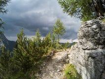 Percorso su una montagna che passa vicino ad una roccia ed alle conifere di gree con una bella vista su paesaggio delle dolomia Fotografia Stock