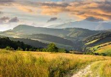 Percorso sul prato del pendio di collina in montagna ad alba Fotografia Stock