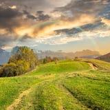 Percorso sul prato del pendio di collina in montagna ad alba Immagini Stock Libere da Diritti