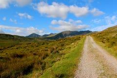 Percorso sulla montagna in Irlanda Immagine Stock