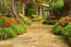 Percorso tropicale del giardino Immagine Stock Libera da Diritti