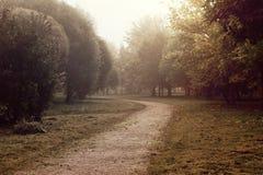 Percorso in un parco con nebbia Immagine Stock