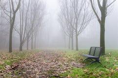 Percorso in un parco il giorno di inverno nebbioso Fotografia Stock