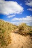 Percorso in una duna di sabbia fotografie stock libere da diritti