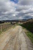 Percorso in viti, Occitanie nel sud della Francia Immagine Stock