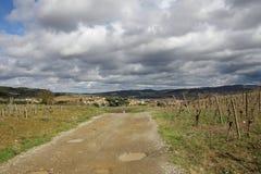 Percorso in viti, Occitanie nel sud della Francia Immagini Stock Libere da Diritti