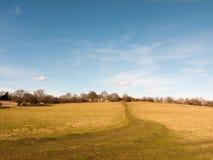percorso vuoto normale aperto massiccio del cielo blu dell'Inghilterra di agricoltura dell'erba del campo dell'azienda agricola g Fotografie Stock