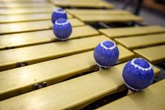 Xylophone, marimba or mallet player with sticks,. Percussion instrument during a concert or performance with cheerfully colored drum sticks Royalty Free Stock Images