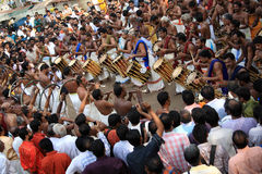Percussion performannce in the Pooram Festival Royalty Free Stock Image