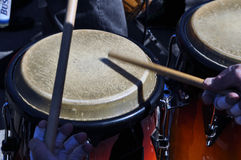 Percussionist royalty free stock photo