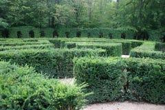 Perdido em um labirinto Foto de Stock