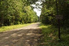 Perdido en el bosque en Forest Road 2458 Foto de archivo