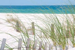 Perdido Key Sand Dune Royalty Free Stock Photography
