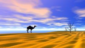 Perdido no deserto Imagens de Stock Royalty Free
