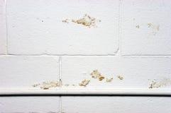 Perdita di danno di infiltramento dell'umidità dell'acqua della parete del basamento Fotografia Stock Libera da Diritti