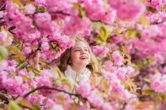 Perdu dans la fleur Concept de botanique Fille appr?ciant des fleurs de cerisier Sakura Enfant mignon appr?cier la journ?e de pri image stock