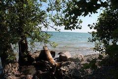 Perdu dans le Canada d'Ontario Photos stock