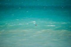 Perdu dans le Pacifique photos stock