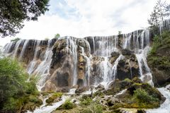 Perełkowa tłum siklawa w Jiuzhaigou parku narodowym Obraz Royalty Free
