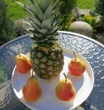 Pere del fenicottero e dell'ananas Immagini Stock Libere da Diritti