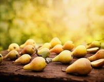 Pere di autunno Fotografia Stock