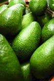 Pere di avocado Immagini Stock