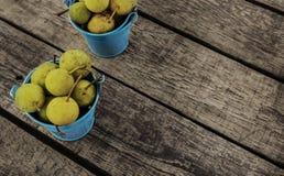 Pere gialle mature succose immagine stock