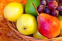 Pere gialle, rosse e verdi con l'uva rossa Immagini Stock