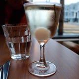 Perełkowy Martini fotografia royalty free