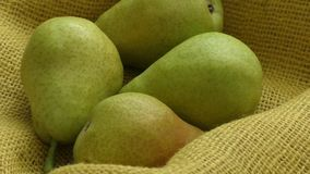 Pere organiche fresche sul licenziamento giallo Pere saporite succose del raccolto di autunno della pera di fondo rustico archivi video