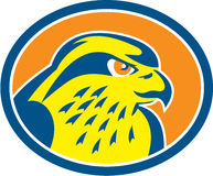 Peregrine Falcon Head Circle Retro Royalty Free Stock Images