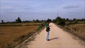 Peregrine Falcon i flykten lager videofilmer