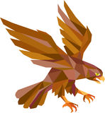 Peregrine Falcon Swooping Low Polygon Stock Photo
