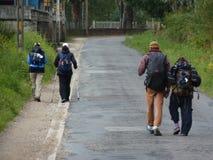 Peregrino a lo largo del camino de San Jaime Hombre que camina en Camino de Santiago Imagen de archivo