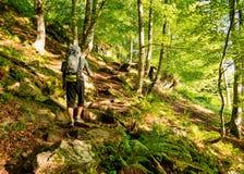 Peregrino só com trouxa que anda o Camino de Santiago na Espanha, maneira de St James fotos de stock