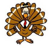 Peregrino Turquia Imagem de Stock Royalty Free