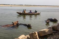 Peregrinos en los bancos del río santo de Ganga varanasi Imagenes de archivo