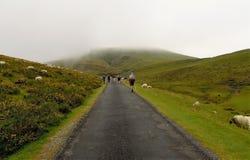 Peregrinos que andam através dos pyrenees Fotografia de Stock