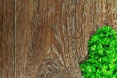 Perejil en un fondo de madera Imagen de archivo libre de regalías