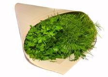 Perejil y eneldo, verdes en bolsos, aislado, cortando, planta fresca Imagen de archivo