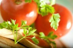 Perejil y tomate imagen de archivo libre de regalías