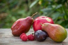 Peren en appelen met frambozen en pruimen Stock Afbeeldingen