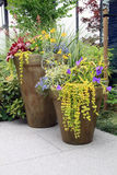 Perennial flower containers Royalty Free Stock Photo