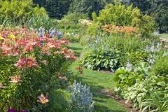 Perennial Garden stock photography