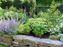 Perennial garden Royalty Free Stock Image