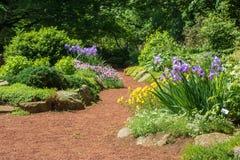 Perennials na flor em um jardim de rocha em Elizabeth Park foto de stock