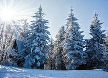 Perfeccione el ` s del Año Nuevo en el Tatras checo Fotos de archivo libres de regalías